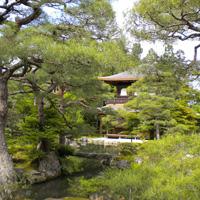 Сад в ансамбле буддийского монастыря