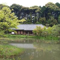 Сад монастыря Дзёруридзи в Киото