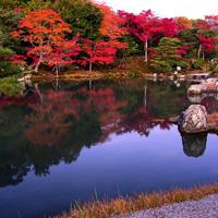 Сад храма Тэнрюдзи в Киото