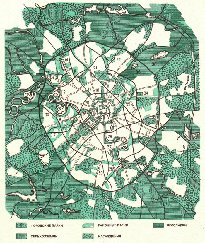 Схема зеленых насаждений