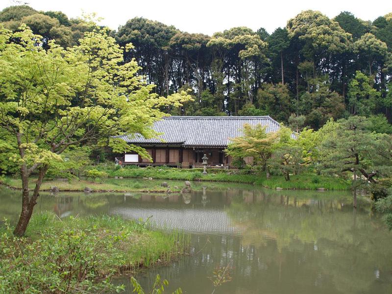 Сад монастыря Дзёруридзи в предместьях Киото