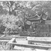 19. Зигзагообразный мостик в парке на юге Китая