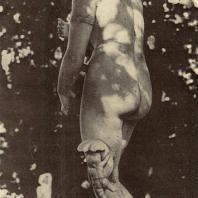 Петергоф. Венера Медицейская. Копия с античного оригинала работы Тимарха и Кефисодота. III век до нашей эры, выполнена в конце XVIII века. Богиня красоты изображена слегка наклонившейся вперед, слева у ее ног дельфин