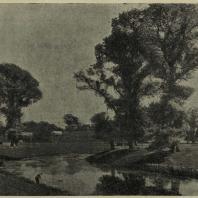 Кром-Корт (Англия). Пейзаж парка