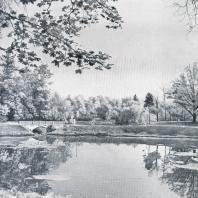 Пруд в Гатчине как пример центрального открытого пространства