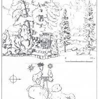 Павловск. Большой каскад. Схема постановки в пейзаже: 1 — липа, 2 — ель, 3 — сирень, 4 — калина, 5 — желтая акация. Рис. О.А. Ивановой