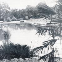 Никитский ботанический сад. Водоемы